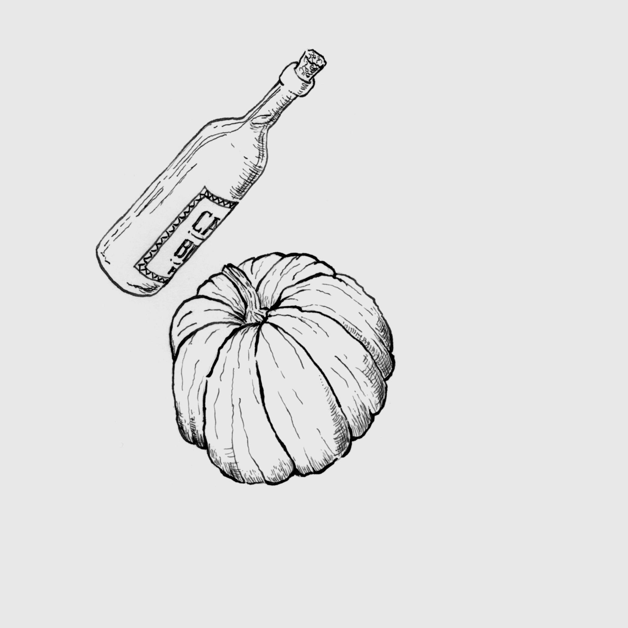 Ilustração 5 (Bico de Pena).